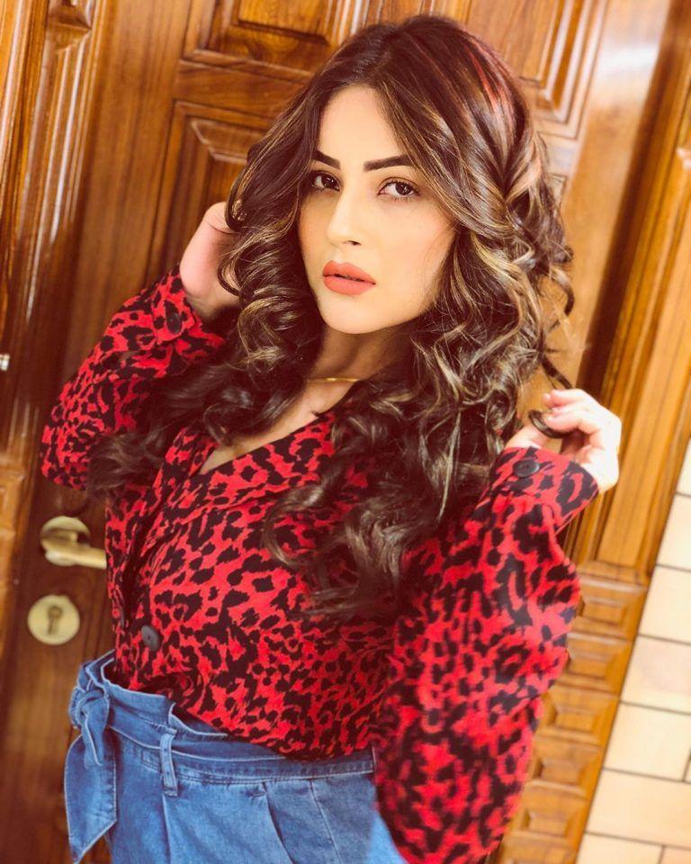 Shehnaaz gill Pubjabi singer
